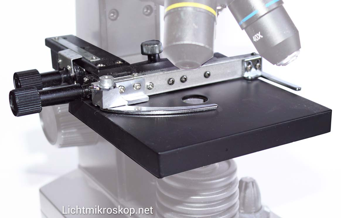 Biologie arbeitsblätter mikroskop der feintrieb am mikroskop